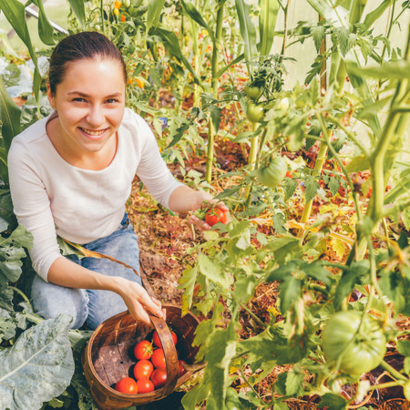 Fruit and vegetable picking is an indutry that needs workers